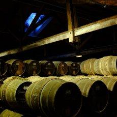 Cognac - 80 km