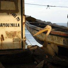 Chacun attend le retour des pêcheurs - Saint-Louis - Sénégal © Arnaud Galy
